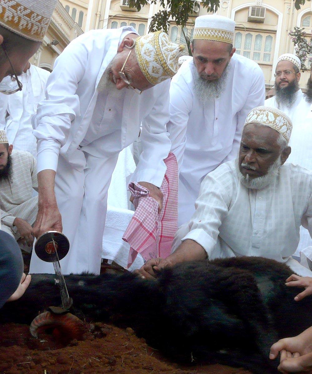 http://media.mumineen.org/archive/photos/akhbar1429/zilhaj-9_saifee_mahal_mumbai.jpg